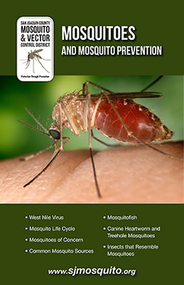 Mosquitoes and Mosquito Prevention Brochure